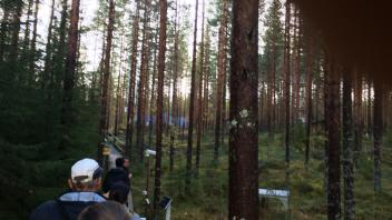Tree selection at Hyytialla Field Station, Finland